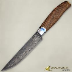 Нож Овощной. Рукоять - орех. Сталь ZDI-1016